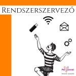 RENDSZERSZERVEZŐ BANKI IT TERÜLETRE- (RSPL-2454)