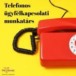TELEFONOS ÜGYFÉLKAPCSOLATI MUNKATÁRS – (TÜPL-2469)